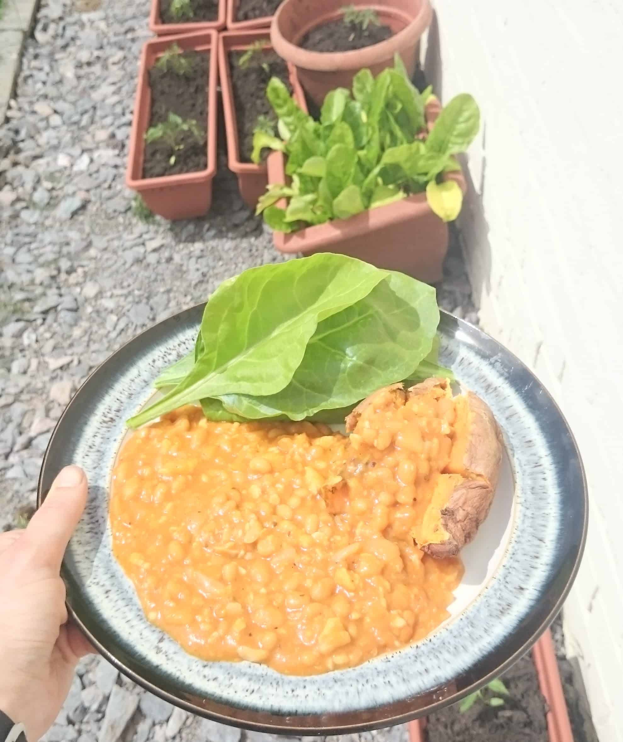 Super Cheap, Quick & Low Syn Slimming World Friendly Fish, Baked Bean & Mayflower Curry Recipe – Serves 2
