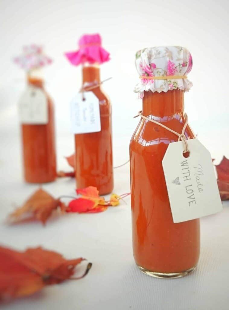 Homemade Lush Tomato Ketchup Gift Recipe - Christmas Idea