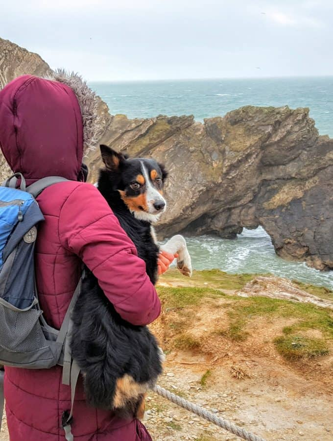 Top 10 Survival Tips on Planning a Coastal Walk