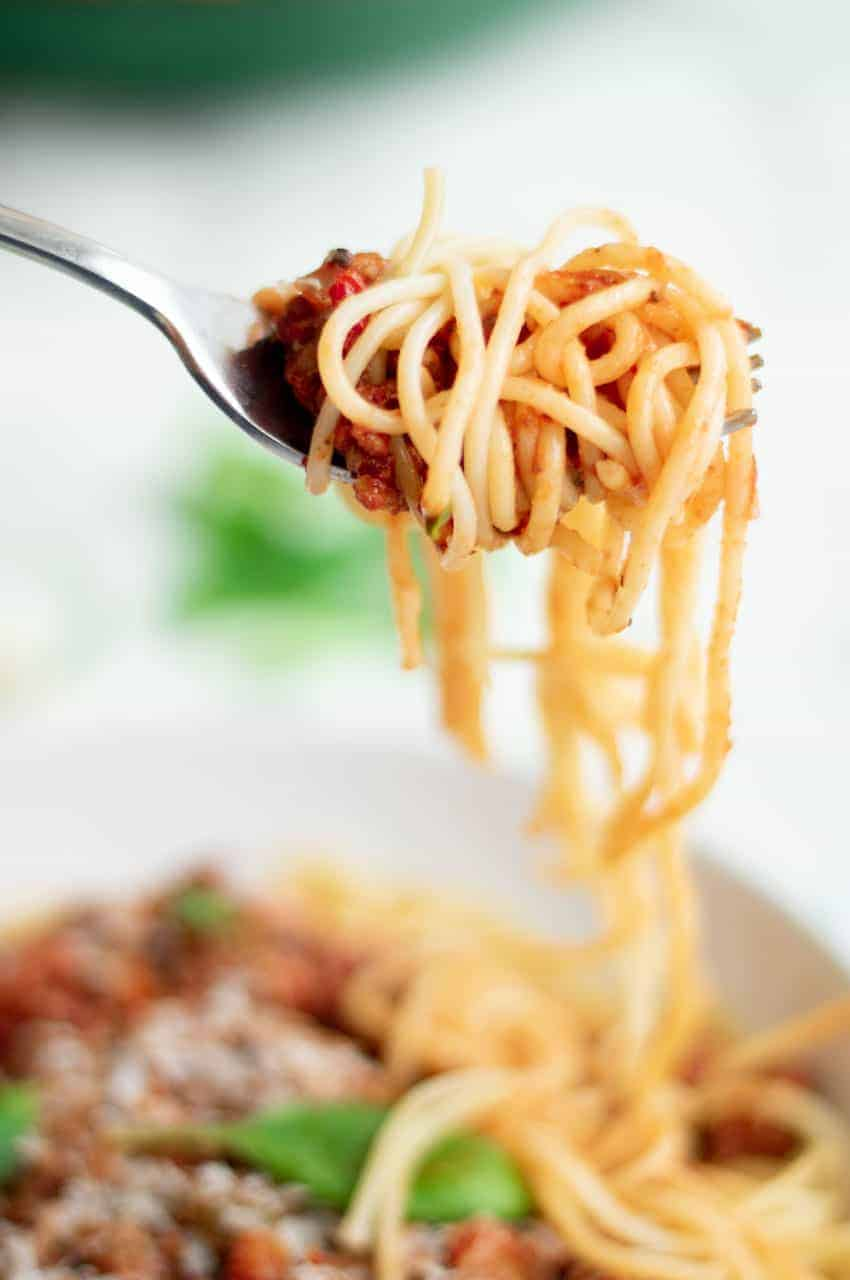 Fork full of Italian spaghetti on Slimming World.